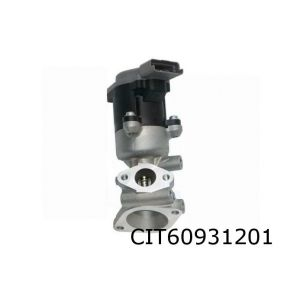 C6 / C5 / 407 / 607 / Discovery III / S-Type (2.7Hdi) Egr-Klep L (Electrisch)