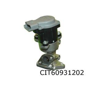 C6 / C5 / 407 / 607 (2.7Hdi) Egr-Klep Achter (Electrisch)