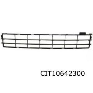 C5 II Voorbumpergrille