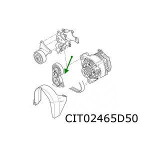 PSA (1.6i/1.8i-16V/2.0i-16V) spanrol multiriem met veer