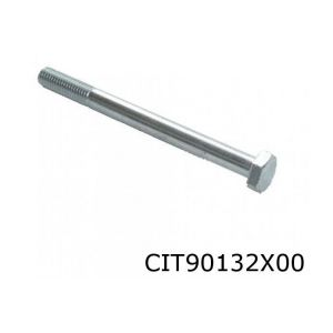 2CV / Ami / Dyane asbout voorzijde M10x120 10.9